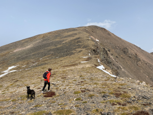 hiking and backcountry safety